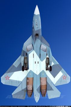 Sukhoi T-50 aircraft picture