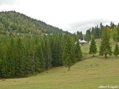 Gheţari village, Apuseni Natural Park, Transylvania Natural Park, Country Roads, Mountains, Nature, Travel, Voyage, Viajes, Traveling, The Great Outdoors