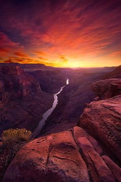 heaven-ly-mind:  Red Canyon