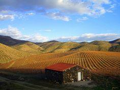 Ervamoira Farm!!! | Flickr - Photo Sharing!