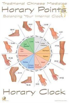 Traditional Chinese Medicine Posters: Horary Acupoints, $9.95 from MagCloud