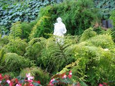Statue of St. Francis of Assisi at the Self Realization Fellowship Lake Shrine, Pacific Palisades, CA