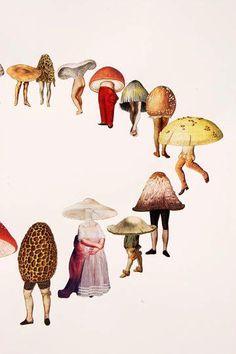 "Traceyanne McCartney on is part of Mushroom art - Mushrooms Amy Ross collage "" Collages, Collage Art, Psychedelic Art, Illustrations, Illustration Art, Botanical Illustration, Mushroom Art, Photocollage, Grafik Design"