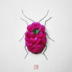 """Criado por Raku Inoue, """"natura insects"""" é uma série em que a vida selvagem de besouros, borboletas e outros insetos foram criados a partir de arranjos florais. Abrangendo nove espécies …"""