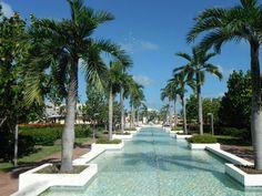 Hotel Playa Cayo Santa Maria Resort : voir 2 422 avis et 5 114 photos