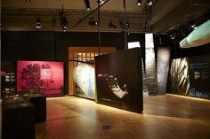 Dramatic, large-scale photo panels