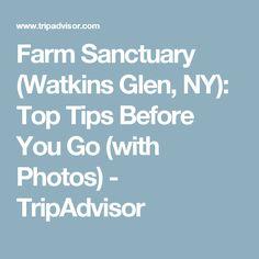 Farm Sanctuary (Watkins Glen, NY): Top Tips Before You Go (with Photos) - TripAdvisor