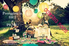 PICNIC: bicycle, food, cool people and music...!!!