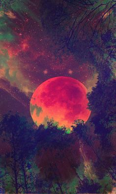 Imagen de moon, night, and colors