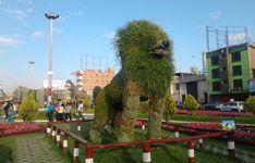 http://www.viajesyturismoaldia.com/2013/12/24/animales-de-flores-en-tacna-peru/ Los animales de flores es una tendencia que se está llevando a cabo en la ciudad de Tacna (Perú), inicialmente estos arreglos florales eran ...