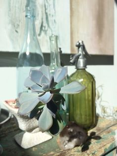 Such gorgeous light & colors in our boutique photo Heather Ross