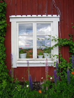 Swedish country window
