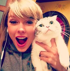 Meet Taylor Swift's Cats- Olivia Benson and Meredith Grey - Wide Open Pets Taylor Lautner, Taylor Swift Cat, Estilo Taylor Swift, Long Live Taylor Swift, Swift 3, Taylor Swift Pictures, Taylor Alison Swift, Taylor Swift Twitter, Olivia Benson