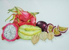 Original watercolour of exotic fruits. Order for Bill only.