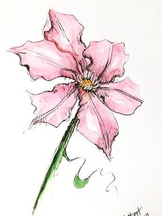 """Original artwork of a lovely pink clematis flower rendered in pen, ink and watercolor. It is titled """"Pink Clematis"""" and is signed and dated at the bottom with the title on the back. The clematis watercolor is done in a lovely magenta pink with a white background. A clematis is what"""