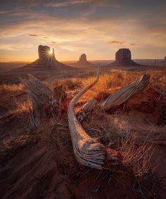 Sunrise in Monument Valley - Nature/Landscape Pictures Best Photographers, Landscape Photographers, National Photography, Nature Photography, Photography Tips, Travel Photography, Photography Tutorials, Amazing Photography, Desert Sunset
