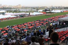 #VDJ2013 #horseracing Horse Racing, Baseball Field, Dolores Park, Travel, Viajes, Destinations, Traveling, Trips