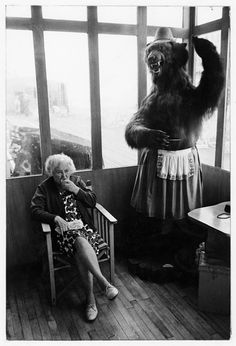 Elderly woman eating pie seated in a piershelter next to a stuffed bear, 1969. Tony Ray-Jones © The National Media Museum, Bradford, UK.