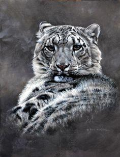 Original Snow Leopard Paintings - Alan M Hunt Wildlife Artist UK