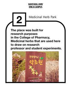 Medicinal Herb Park in ERICA campus   #herbpark #erica #hanyang #campus #herb #university