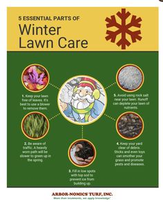 Don't neglect your Atlanta lawn this winter. Remember these top 5 tips for caring for your yard!