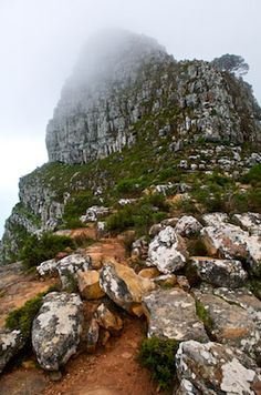 lion's head in the fog. Grand Tour, Afrikaans, Study Abroad, Cape Town, Continents, Playground, South Africa, Roots, Road Trip