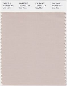 Pantone Smart 13-0403 TCX Color Swatch Card   Gray Morn   Magazine Cafe Store NYC USA