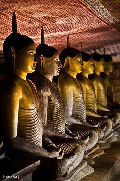 Buddha Statues, Cave Tample, Dambulla, Central Province, Sri Lanka (www.secretlanka.com)