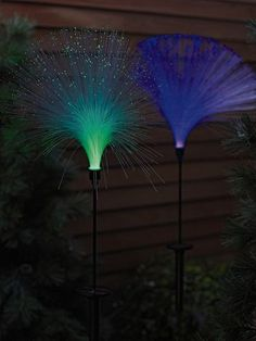 Fiber Optic Solar Light    I love these in my garden! I bought 2 and now buying 4 more.