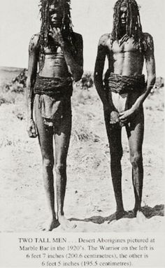 Indigenous Australian history