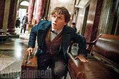"Eddie Redmayne as Newt Scramander: An eccentric globe-hopping English ""magizoologist"" wizard who's far more comfortable around beasts and creatures than he is around other people. Comes to New York on a quest with his case full of magical habitats containing rare and endangered species.  Image Credit: Jaap Buitendijk"