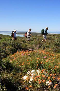 West Coast National Park, SA.