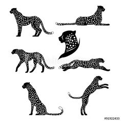 Set of graphic cheetahs Royalty Free Vector Image Cheetah Logo, Cheetah Tattoo, Tiger Tattoo, Cheetah Drawing, Hugging Drawing, Art Pages, Piercings, Graphic, Art Inspo
