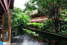 Cafe at Jim Thompson's house in Bangkok Tropical Backyard, Tropical Landscaping, Tropical Houses, Backyard Landscaping, Asian House, Thai House, Jim Thompson House, Landscape Design, Garden Design