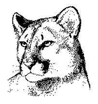 Free cougar clipart pictures idea 2
