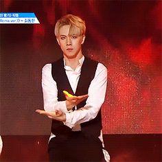 kim donghan - shape of you