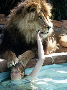 Melanie Griffith with the family pet lion, Neil ~ May 1971 (photo by Michael Rougier)