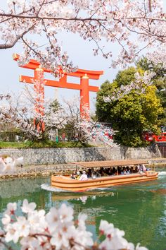 Cherry Blossom Japan, Cherry Blossoms, Beautiful Places In Japan, Japan Spring, Himeji Castle, Osaka Castle, Famous Castles, Before Sunset