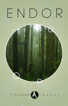 Endor - House of the Ewoks