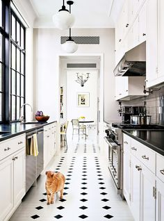 Classic White Kitchen With Black Accents