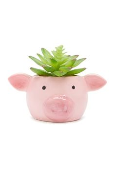 Pig Face Potted Faux Succulent