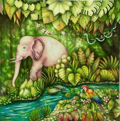 Inspirational Coloring Pages by @cherrycolours #magicaljungle #johannabasford #selvamagica