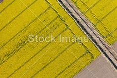 Aerial view of burying gas pipe in a country harvest fields