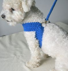 Friendly DOG harness, Matching leash, Dog cotton harness \\ Pet harnesse - Ready to SHIPArnés del perro amistoso correa que empareja arnés del pertoThis dog harness is friendly handmade from pure cotton . Crochet harness for your pet. Crochet Dog Clothes, Crochet Dog Sweater, Pet Clothes, Small Dog Clothes, Dog Clothing, Dog Clothes Patterns, Dog Crafts, Pink Dog, Dog Pattern