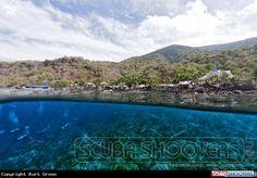 Village with diver's  in Pulau - Pura Island - Indonesia