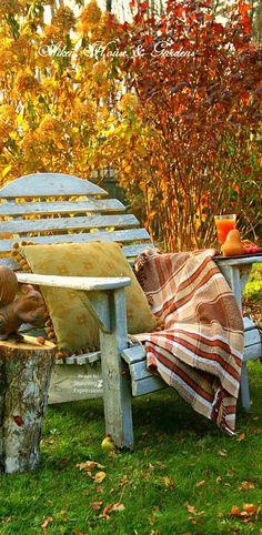 Autumn Confort                                                                                                                                                                                 More