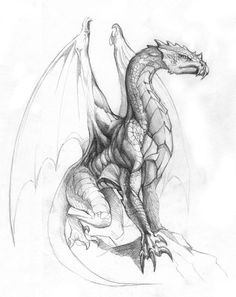 I like this style of dragon - mythical