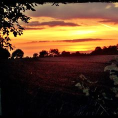 Sunset In Cusworth Doncaster by Patricia Glover