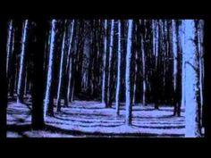 Trailer - Night School - C.J. Daugherty
