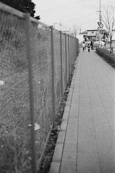 フェンス (The fence)
